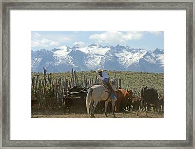 Taking The Hard Shot Framed Print by Lee Raine