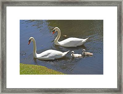 Taking The Kids Out Framed Print