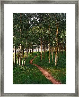 Taking Tthe Path Less Traveled Framed Print by Carl Bandy