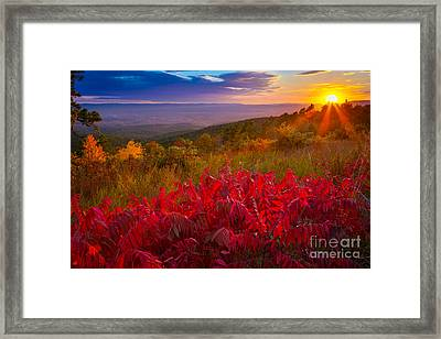 Talimena Evening Framed Print by Inge Johnsson