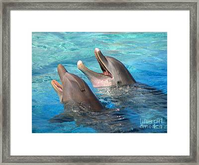 Framed Print featuring the photograph Talking Dolphins by Kristine Merc
