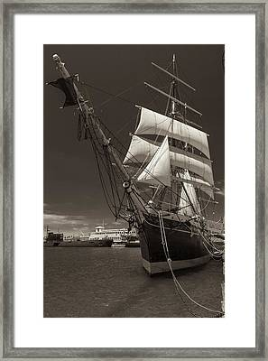 Tall Beauty Black And White Sepia Framed Print by Scott Campbell