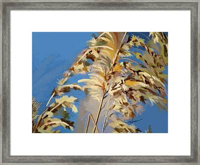 Tall Grass Mix Framed Print by Anthony Fishburne