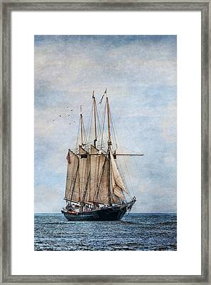 Tall Ship Denis Sullivan Framed Print by Dale Kincaid