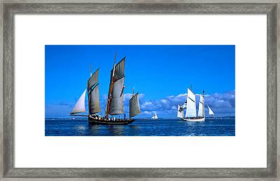 Tall Ship Regatta Featuring Cancalaise Framed Print by Panoramic Images