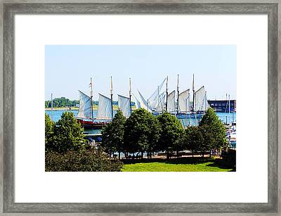 Tall Ships Passing Framed Print by Nicky Jameson
