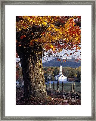 Tamworth Autumn - Fm000112 Framed Print by Daniel Dempster