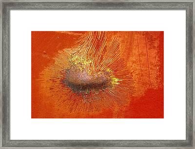 Tangerine Burst Framed Print by Leanna Lomanski