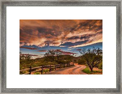 Tangerine Dream Framed Print by Beverly Parks