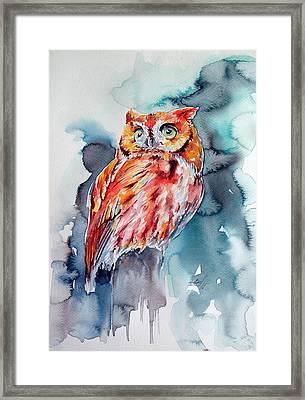 Tangerine Owl  Framed Print