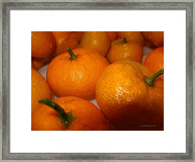 Tangerines 01 Framed Print by Brian Gilna