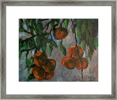 Tangerines At Dawn Framed Print by Peter Paul Christian Mahilum
