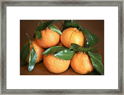 Oranges Framed Print by Michael Riley
