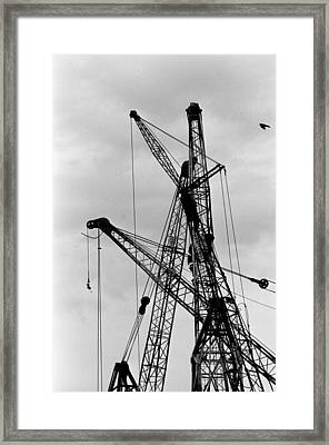 Tangled Crane Booms Framed Print