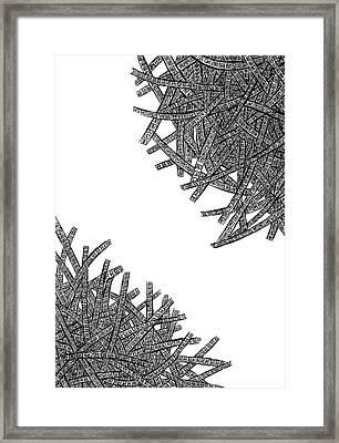 Tangled Up Framed Print by Shabnam Nassir