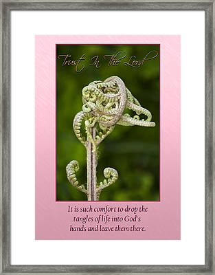 Tangles Framed Print by Carolyn Marshall