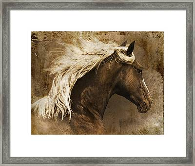 Taos Framed Print by Priscilla Burgers