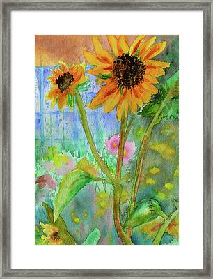 Taos Sunflowers Framed Print by Beverley Harper Tinsley