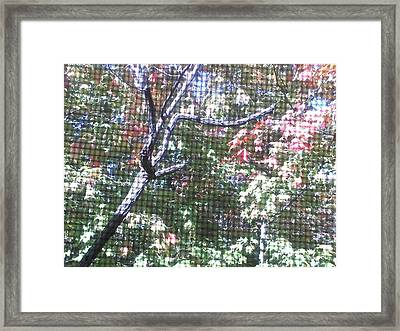 Framed Print featuring the photograph Tapestry Of Leaves 1 by Gayle Price Thomas