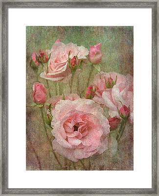 Tapestry Of Roses Framed Print by Angie Vogel