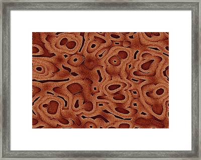 Tapma Framed Print by Jeff Iverson