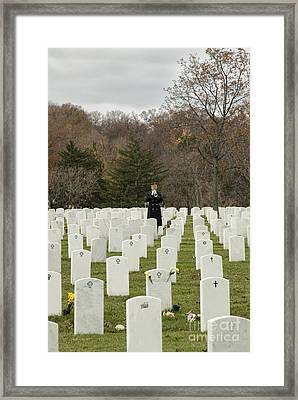 Taps Framed Print by Terry Rowe