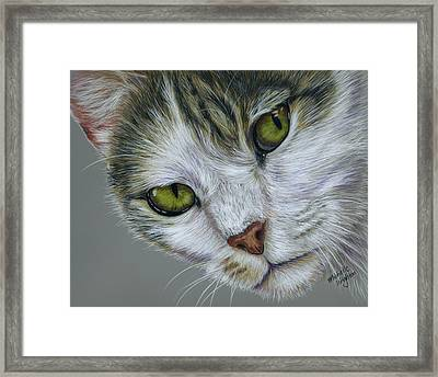 Tara Cat Art Framed Print