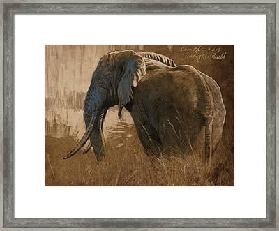Tarangire Bull Framed Print by Aaron Blaise