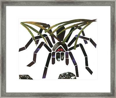 Tarantula Framed Print by Earl ContehMorgan