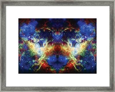 Tarantula Reflection 2 Framed Print by Jennifer Rondinelli Reilly - Fine Art Photography