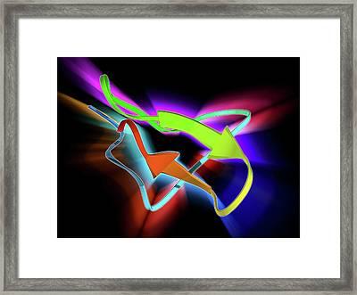 Tarantula Toxin Molecule Framed Print by Laguna Design