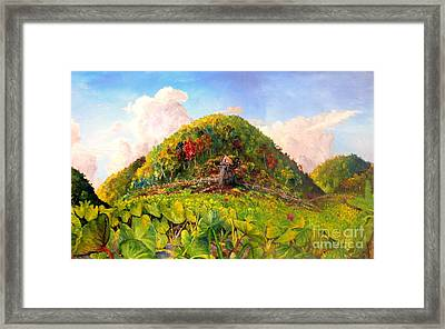 Taro Garden Of Papua Framed Print