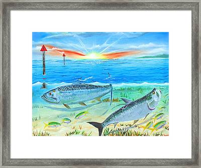 Tarpon At Sunrise Framed Print