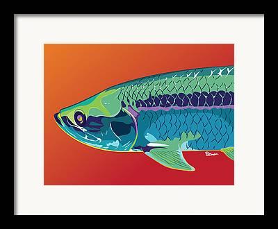 Colorful Fish Framed Prints