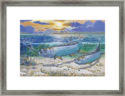 Tarpon Cut In0011 Framed Print by Carey Chen