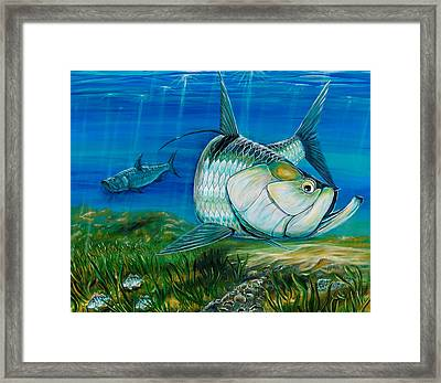 Tarpon On The Flats Framed Print