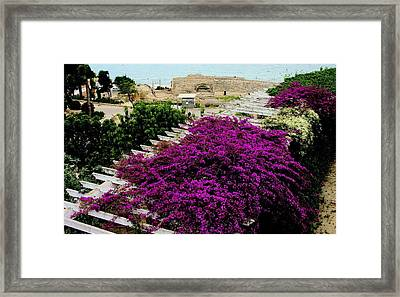 Tarragona Roman Amphitheater Framed Print by Jacqueline M Lewis