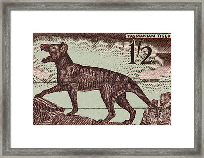 Tasmanian Tiger Vintage Postage Stamp Framed Print by Andy Prendy