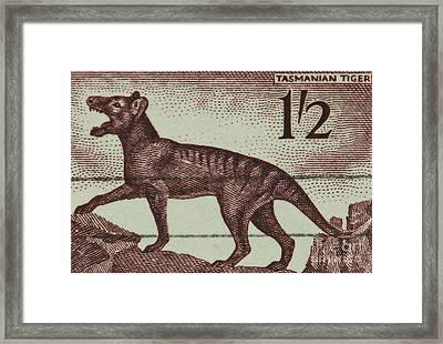 Tasmanian Tiger Vintage Postage Stamp Framed Print