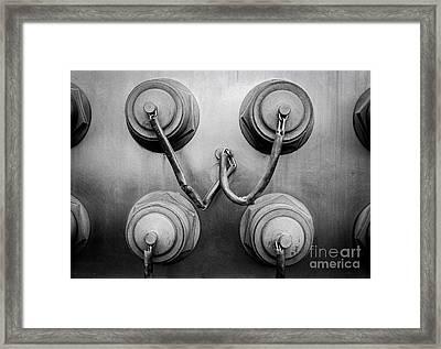 Tassled Framed Print by Dean Harte