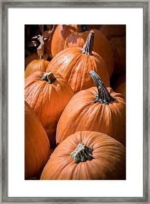 Taste Of Autumn Framed Print by Karen Wiles
