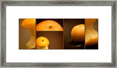 Tasty Pear Framed Print by Lisa Knechtel