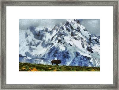 Tatanka Buffalo In Wyoming Framed Print by Dan Sproul