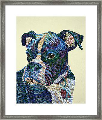 Tater - Portrait Of A Boxer Framed Print