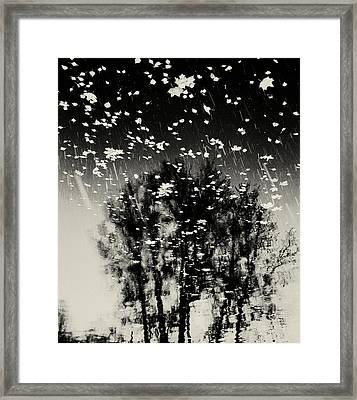 tathata #12NULLUS2 Framed Print by Alex Zhul