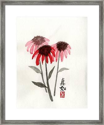 Tathata Framed Print