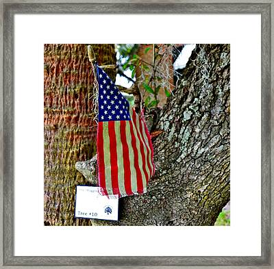 Tattered America Framed Print by Patricia Greer