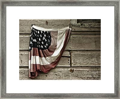 Framed Print featuring the photograph Tattered Glory by Vicki DeVico