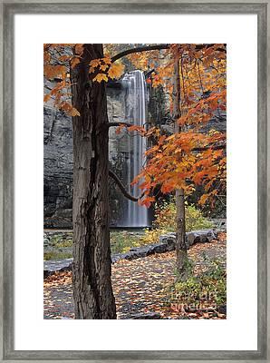 Taughannock Falls - Fs000402 Framed Print