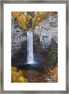 Taughannock Falls In Autumn Framed Print
